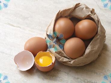 بخشنامه171سال99-بخشنامه-صادرات تخم مرغ خوراکی-تهران پیشرو-شرکت واردات و ترخیص کالا