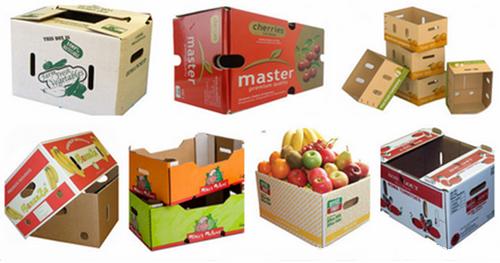 حفاظت میوه صادراتی