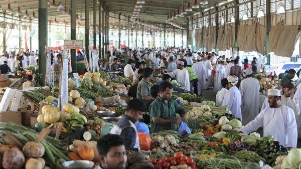 صادرات میوه به عمان