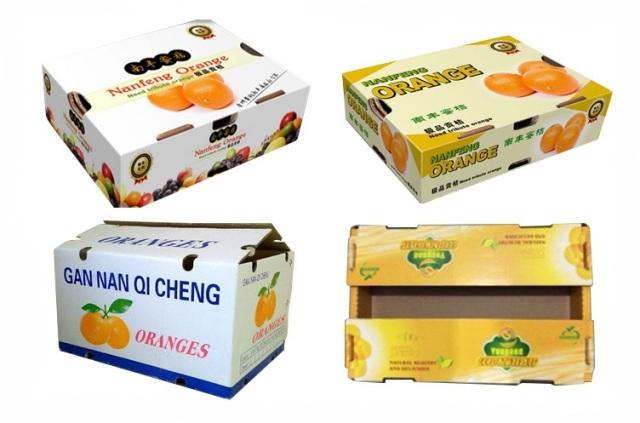 بسته بندی کارتنی میوه