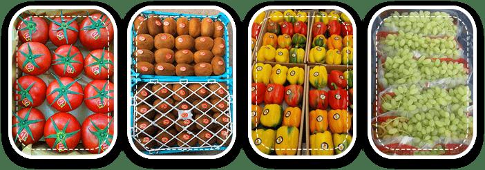 بسته بندی میوه