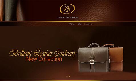 Brilliant Leather's website design