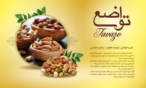 Tavazo nuts' website design