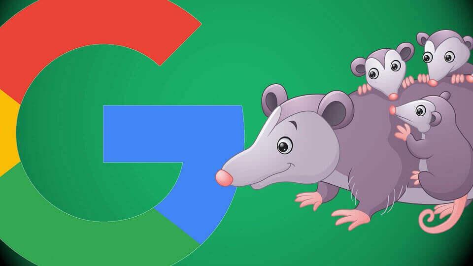 [تصویر: possum-algorithm-google.jpg]