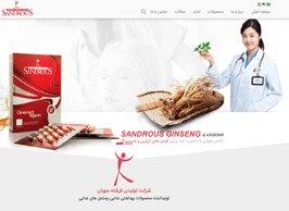 طراحی سایت شرکت سندروس