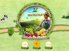 طراحی سایت شرکت برکت جوین